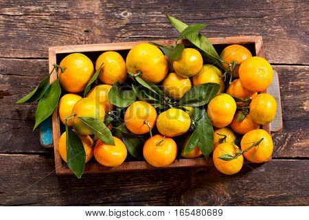 Fresh Mandarin Oranges Fruit