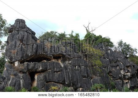Suan Hin Pha Ngam or Thailand's Kunming A limestone garden in Loei Thailand
