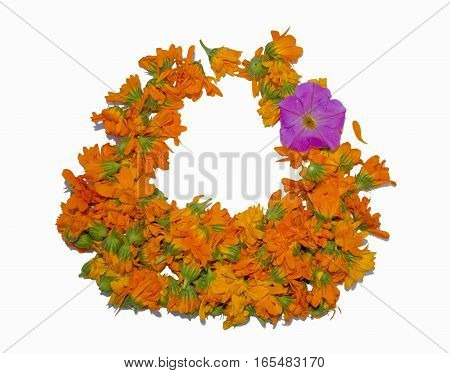 Group of flower arranged in form of hand basket