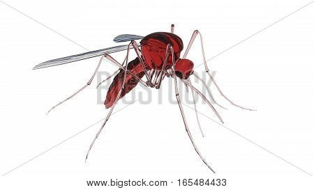 3d render of a mosquito isolated on white background