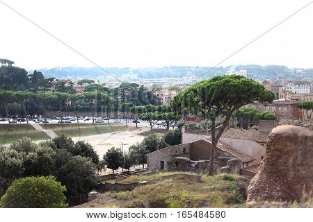 Type of Rome. Capital city old view