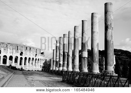 The Colosseum in Rome and columns. Italy