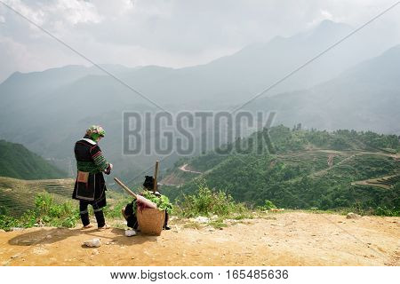 Sapa (Sa Pa) Vietnam - October 19 2015: Hmong women in national clothes on mountain top at highlands of Sapa District (Sa Pa) Lao Cai Province. Scenic green rice terraces in background.
