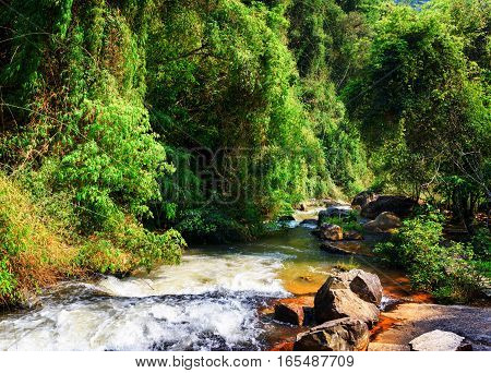 Scenic River With Crystal Clear Water Among Green Woods