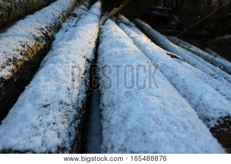Logs for the fireplace at the fence in the snow, winter background