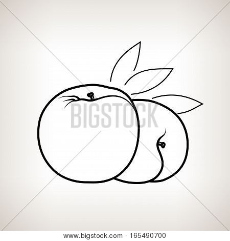 Peach, Image Peach in the Contours on a Light Background ,Black and White Illustration