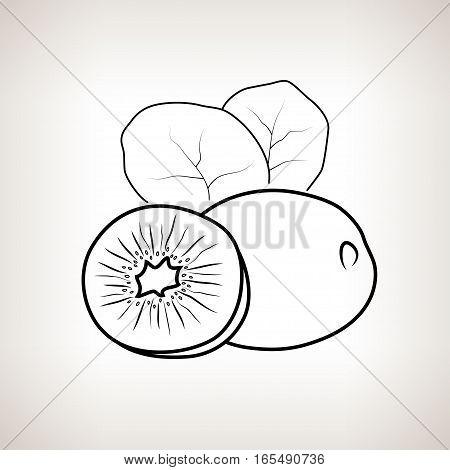Kiwifruit, Image Kiwi in the Contours on a Light Background , Black and White Illustration