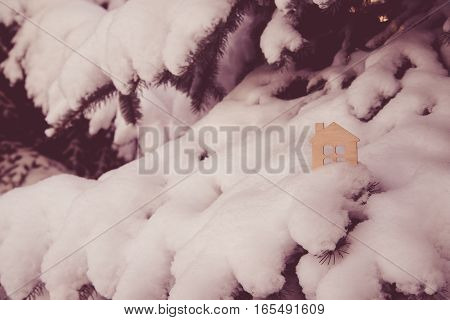 symbol of the house stands on a snow-covered fir branches