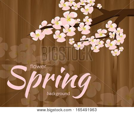 blossoming twig of cherry on the wooden background