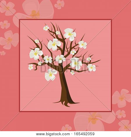flowering tree cherry frame on the pink background