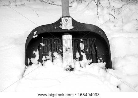 snow shovel in fresh snow on nature