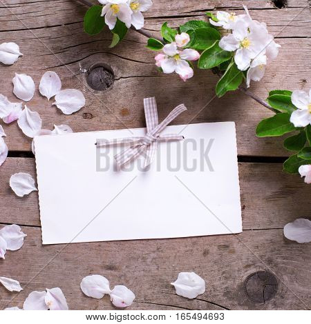 Empty tag and tender apple tree flowers on aged vintage wooden background. Selective focus is on tag. Place for text. Top view. Flat lay. Square image.