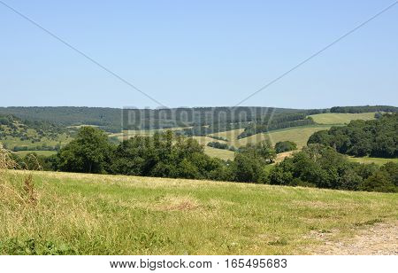 The South Downs countryside and landscape at Goodwood near Chichester West Sussex England