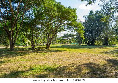 File name:Landscape of grass field and green environment public park in Pai, Thailand