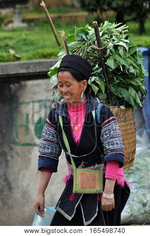 Hmong Woman (chinese Minority) In Sapa, Vietnam