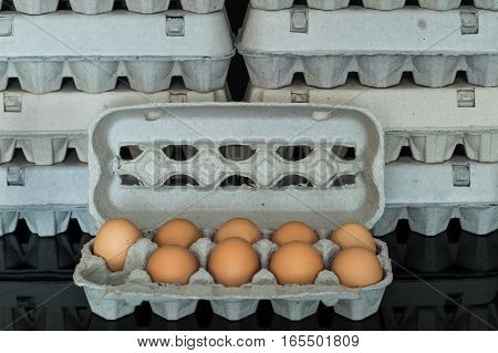 Egg Box With Nine Organic Chicken Eggs Inside
