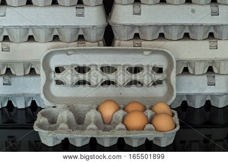 Egg Box With Five Organic Chicken Eggs Inside