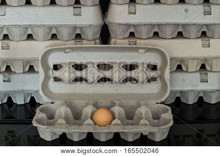 Egg Box With One Organic Chicken Egg Inside