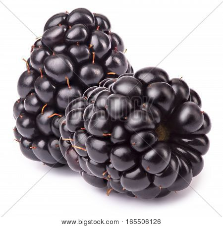Group of two ripe blackberries isolated on white background with clipping path