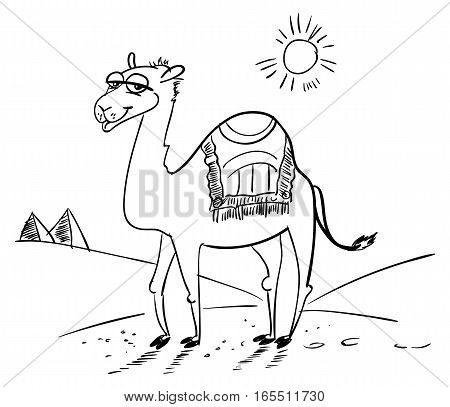 Camel in the desert. Funny cartoon character. Vector illustration. Coloring book. Black and white