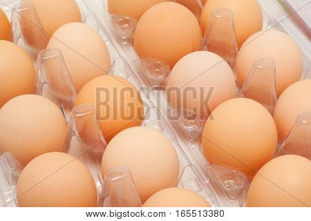 A lot of fresh eggs in a plastic container