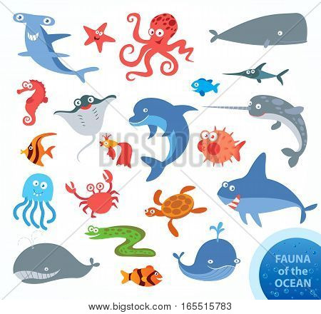Set funny fauna of ocean. Narwhal, hammerhead shark, white shark, whale, dolphin, swordfish, turtle, jellyfish, octopus, sea horse, crab, starfish. Funny cartoon character. Vector illustration