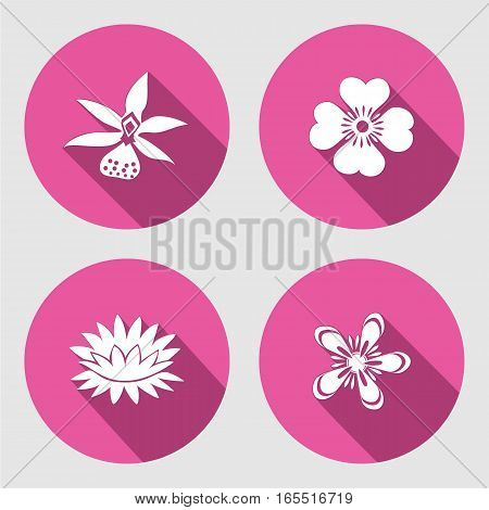Flower icons set. Anemone, chamomile, forget-me-not, lily, waterlily, orchid. Floral symbol. Round circle flat sign with long shadow. Vector