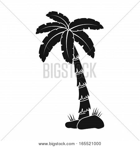 Palm tree icon in black design isolated on white background. Brazil country symbol stock vector illustration.