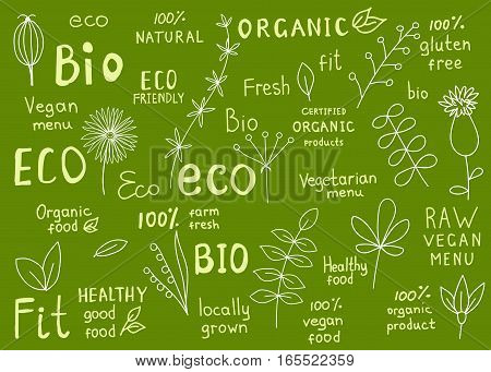 Set of organic fit natural fresh bio gluten free raw eco healthy food labels. Retro badges with floral elements for vegan cafe restaurant menu farm market products packaging. Hand drawn vector signs.