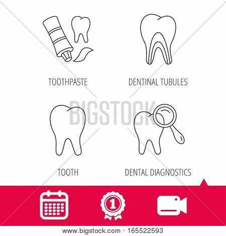 Achievement and video cam signs. Tooth, dental diagnostics and toothpaste icons. Dentinal tubules linear sign. Calendar icon. Vector