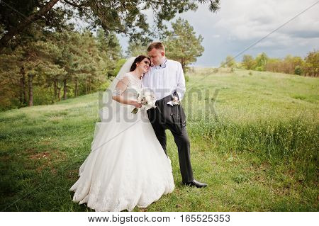 Elegance Wedding Couple At Their Day Background Pine Forest. Happy In Love Newlyweds.