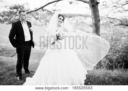 Elegance Wedding Couple At Their Day Background Pine Forest. Happy In Love Newlyweds. Black And Whit