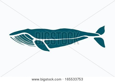 Blue whale. Balaenoptera musculus. Whale isolated on a light background. Logo for your design. Ink. Hand drawn.