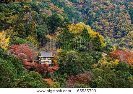 Temple On Arashiyama Hill At Autumn