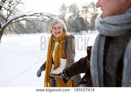 Beautiful senior woman and man in sunny winter nature going ice skating.