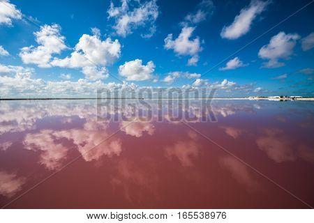 Salt Pink Lagoon In Las Coloradas, Yucatan, Mexico
