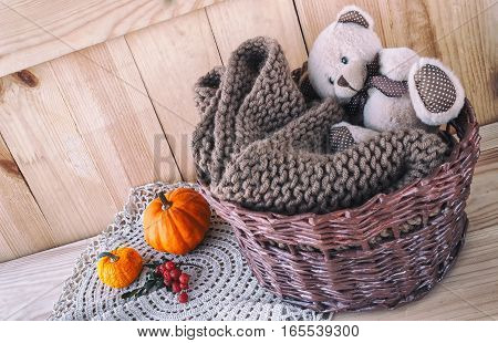 teddy bear and a knitted scarf in a basket