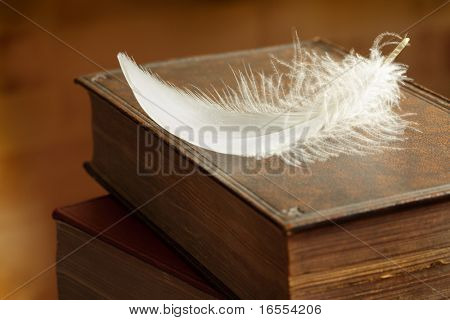 Single white bird feather on top of a hardback book