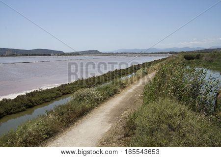 QUARTU S..E: Overview of the saline within the Molentargius Regional Park - Sardinia