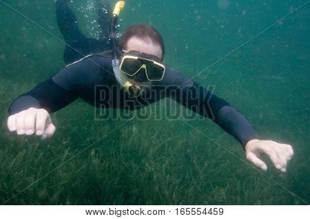 Snorkeler Swimming Over Sea Grass