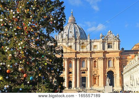 Christmas in the Vatican City, decorated Christmas tree in the square in front of St. Peter's Basilica