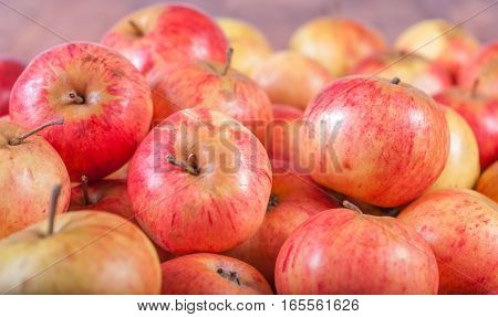 collected a pile of fresh red apples