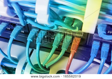 Server rack with blue and red internet patch cord cables connected to black patch panel in server room horizontal. Uniqueness concept