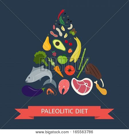 Paleolithic Diet Pyramid. Infographic about healthy food