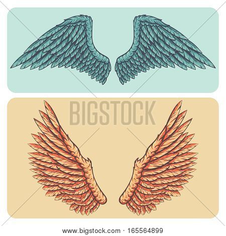 Cartoon style layered hand drawn vector illustration set - naturalistic bright colored spread wings.