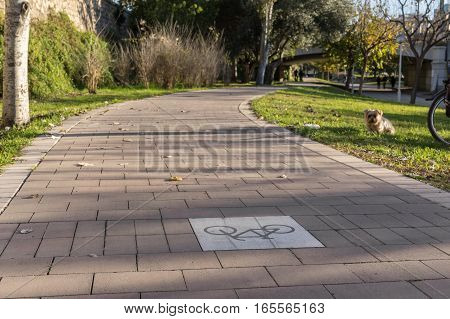 close-up of inverted Road sign on the cycleway, bikeway for cyclists only. Bike lane in the Turia River gardens in Valencia Spain