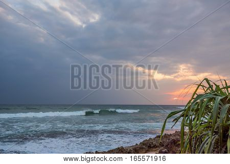 Scenic tropical coastline with palms silhouetes and blue sky