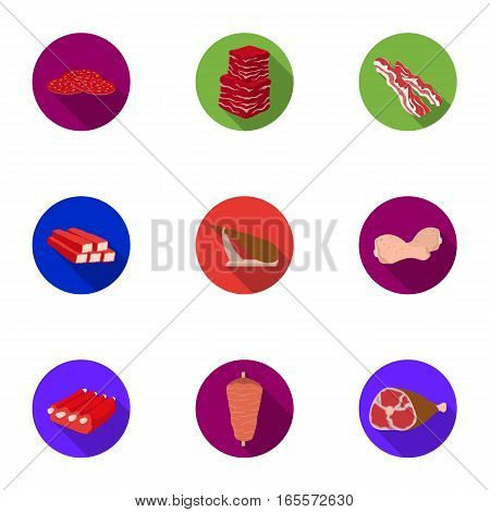 Meats set icons in flat style. Big collection of meats vector symbol stock