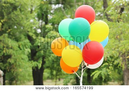 Colorful balloons outdoors in the park, close up
