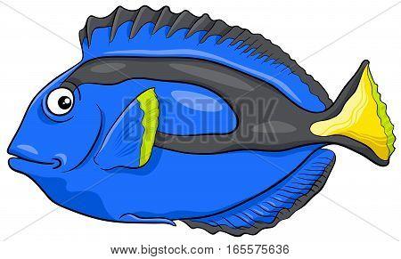 Blue Tang Fish Character